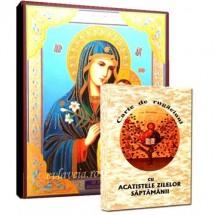 Carte de Rugaciuni si Icoana Maica Domnului Floarea de Crin