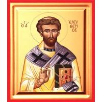 Icoana Sfantul Elefterie, pictata 19 / 25 cm