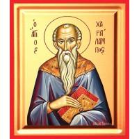 Icoana Sfantul Haralambie, pictata 19 / 25 cm