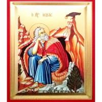 Icoana Sfantul Prooroc Ilie, pictata 19 / 25 cm